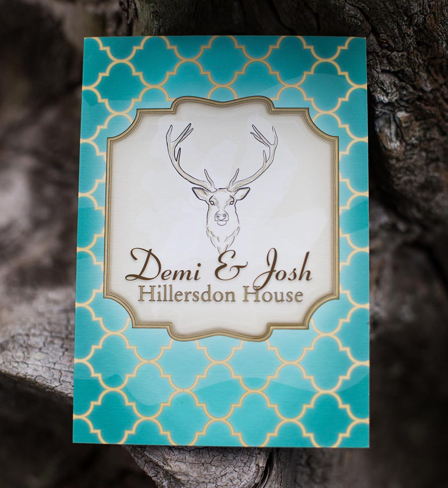 Stag head design with a hand drawn look, framed elements and a patterned background